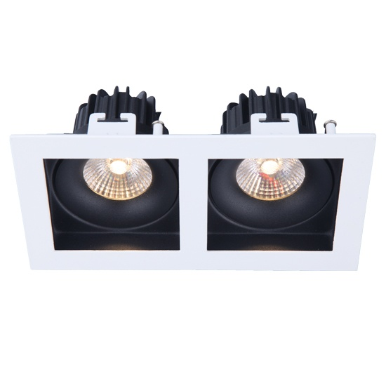 Fixed Double heads 2*10W led downlight cutout 168*88mm